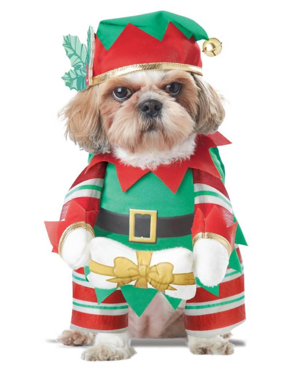 deguisement noel chien Déguisement pour chien lutin Aa0001 deguisement noel chien