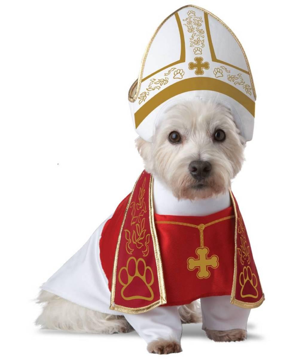 Dguisement pour chien pape aa0002 - Lanceur de balles pour chien ...