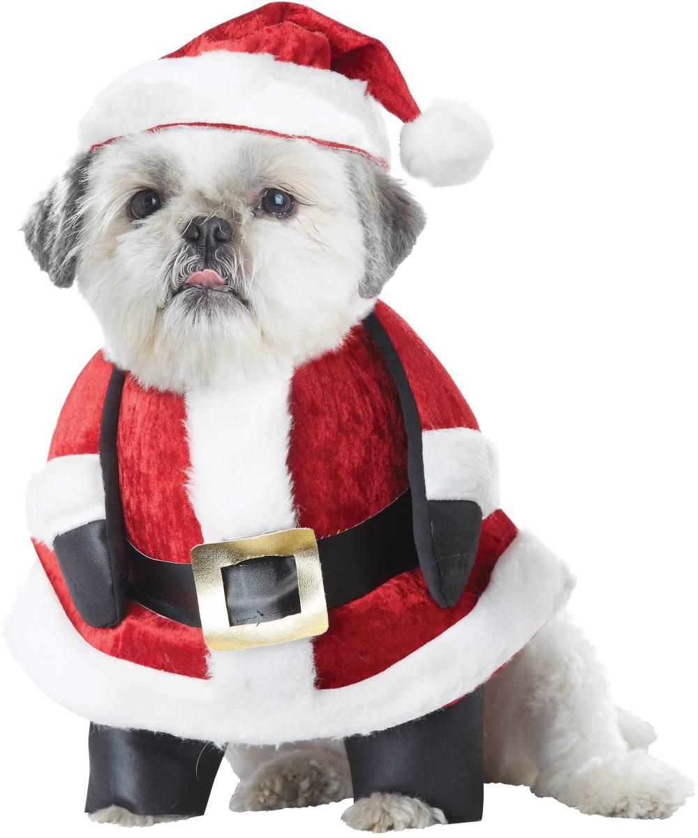 Déguisement-de-Père-Noël-pour-chien