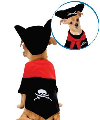 Déguisement-Pirate-pour-Chien