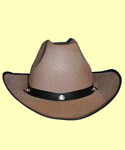 Chapeau-Cow-Boy-Std-beige-AD
