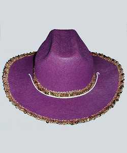 Chapeau-Saloon-AD2-violet