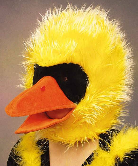 Chapeau-tête-de-canard