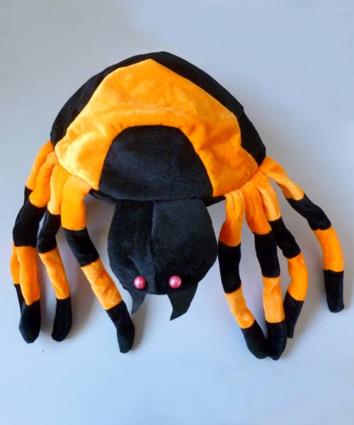 Chapeau-araignée