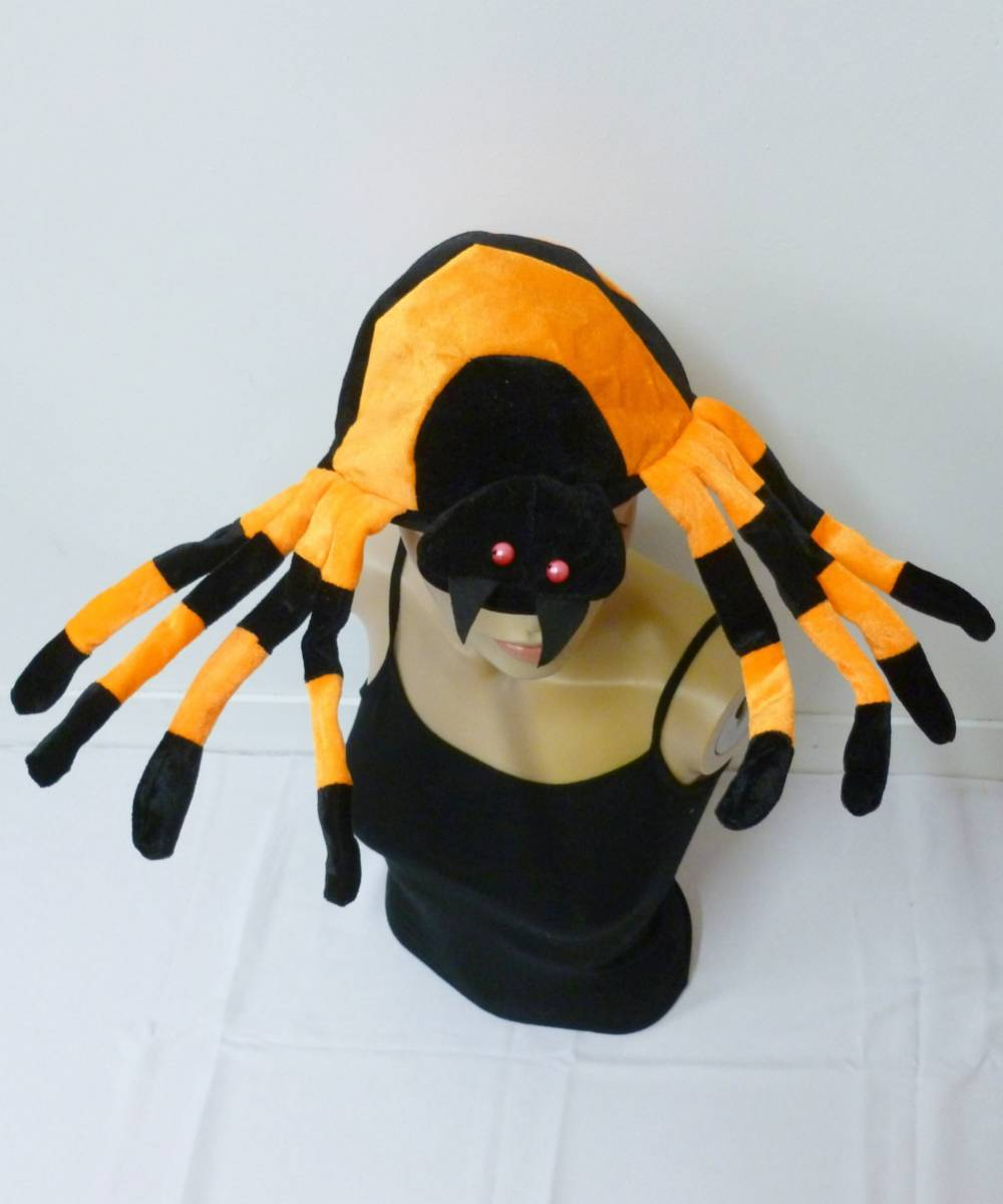 Chapeau-araignée-2