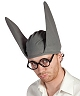 Chapeau-Bonnet-âne
