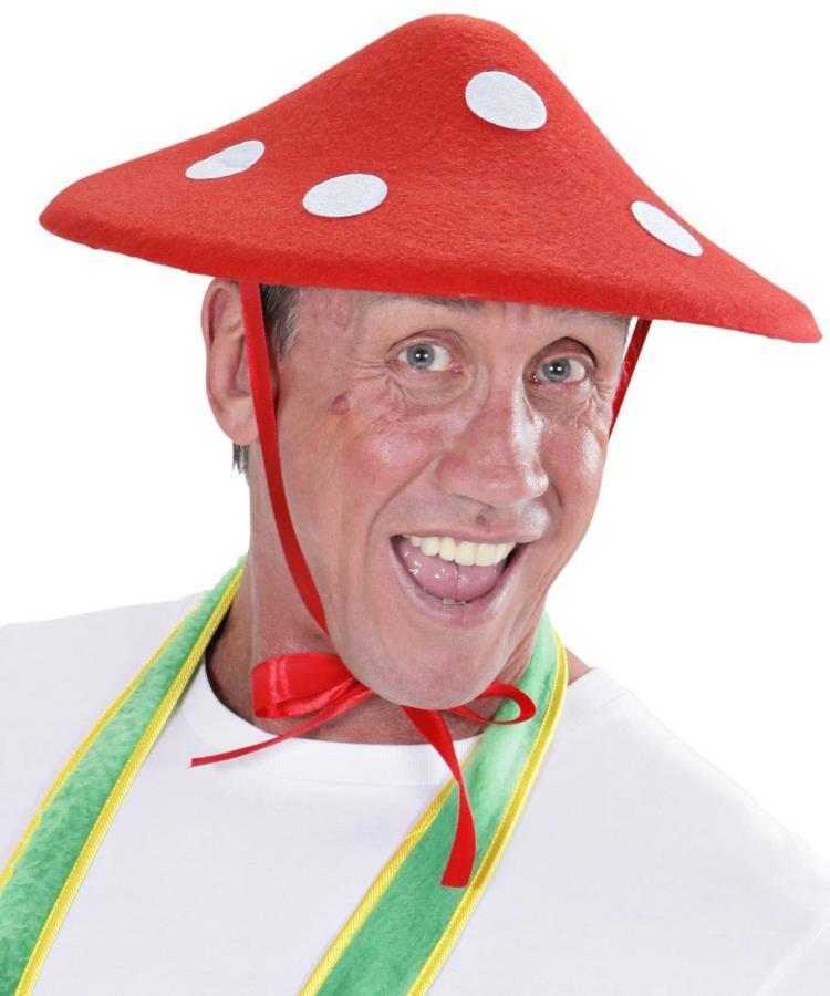 Chapeau-champignon-1
