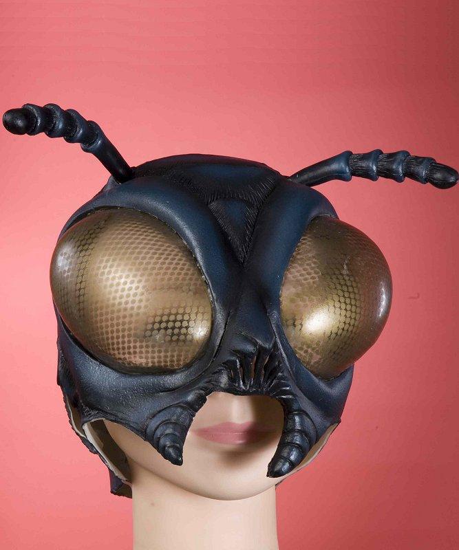 Masque-de-mouche