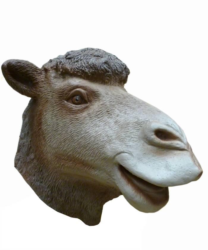 Masque-de-chameau