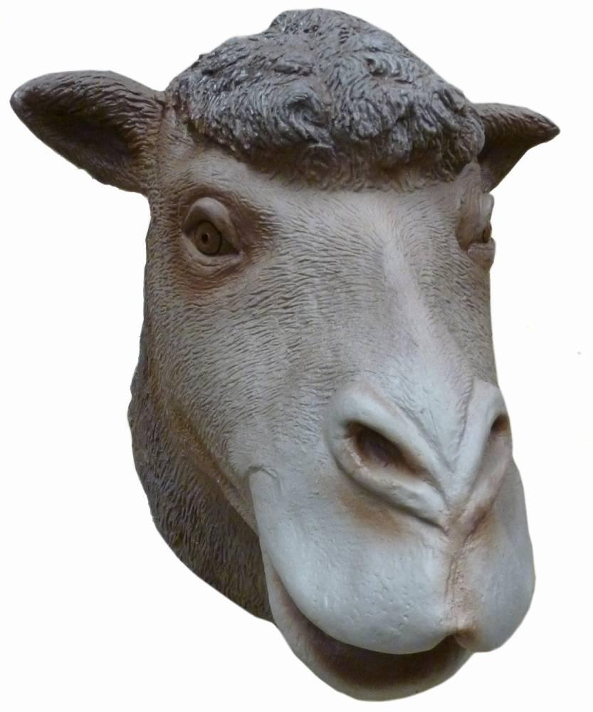 Masque-de-chameau-2