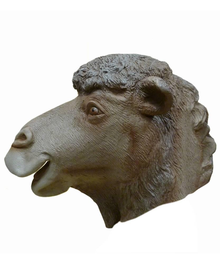 Masque-de-chameau-3