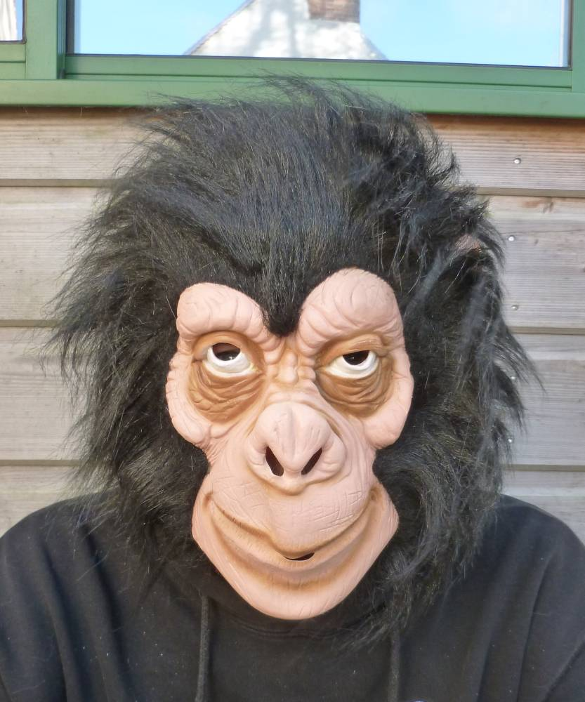 Masque-de-singe-2