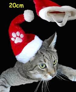 bonnet de noel pour chat BonDe Noel Pour Chat gallery bonnet de noel pour chat