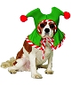 Bonnet-Lutin-chien-chat