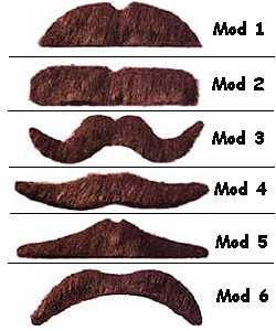 Moustaches-Bacchantes-brunes