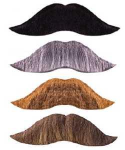 Fausse-moustache-épaisse