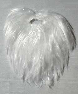 Barbe-raide-blanche