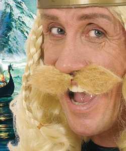 Moustache-de-gaulois-blonde