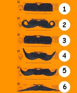 Moustaches-bacchantes-noires