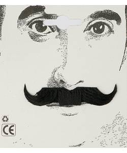 Fausse-moustache-de-Dandy
