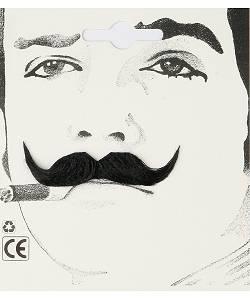 Fausse-moustache-d'élégant