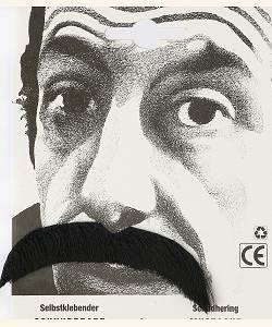 Fausse-moustache-mexicaine