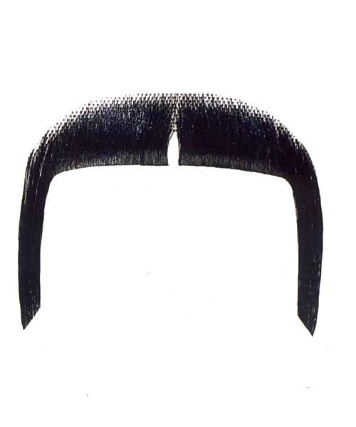 Fausse-moustache