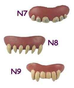Dentier-3