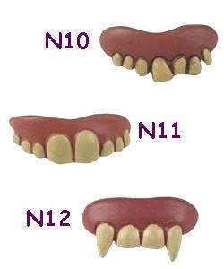 Dentier-4