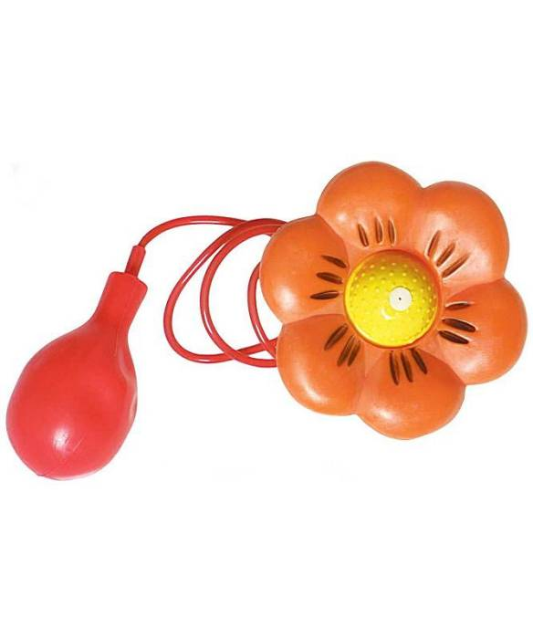 Fleur-lance-eau-de-clown