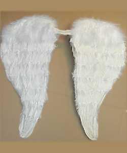 Ailes-plumes-50x60cm