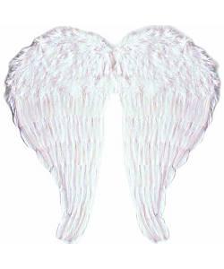Ailes-en-plumes-64x67cm