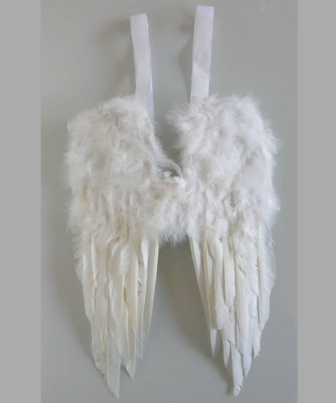 Ailes-plumes-30x45cm
