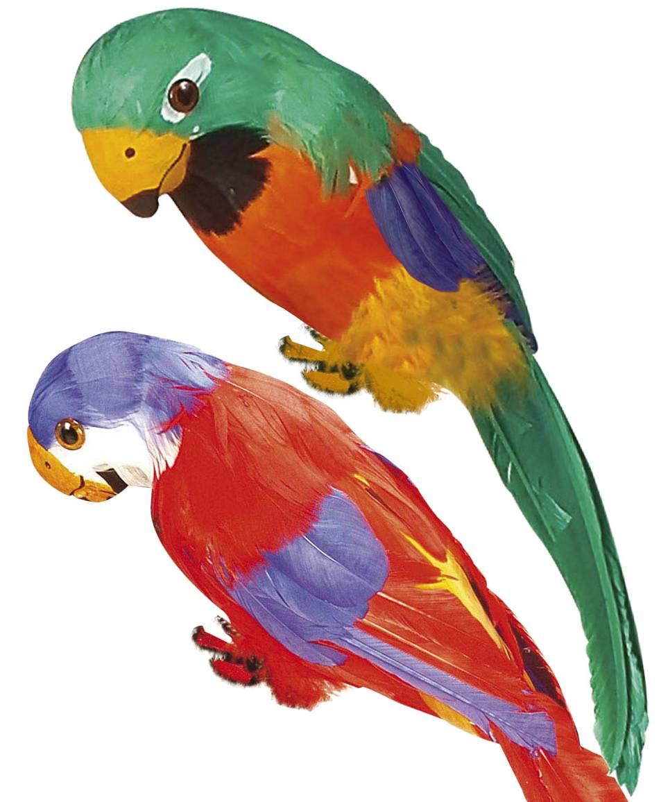 Perroquet-factice-35cm