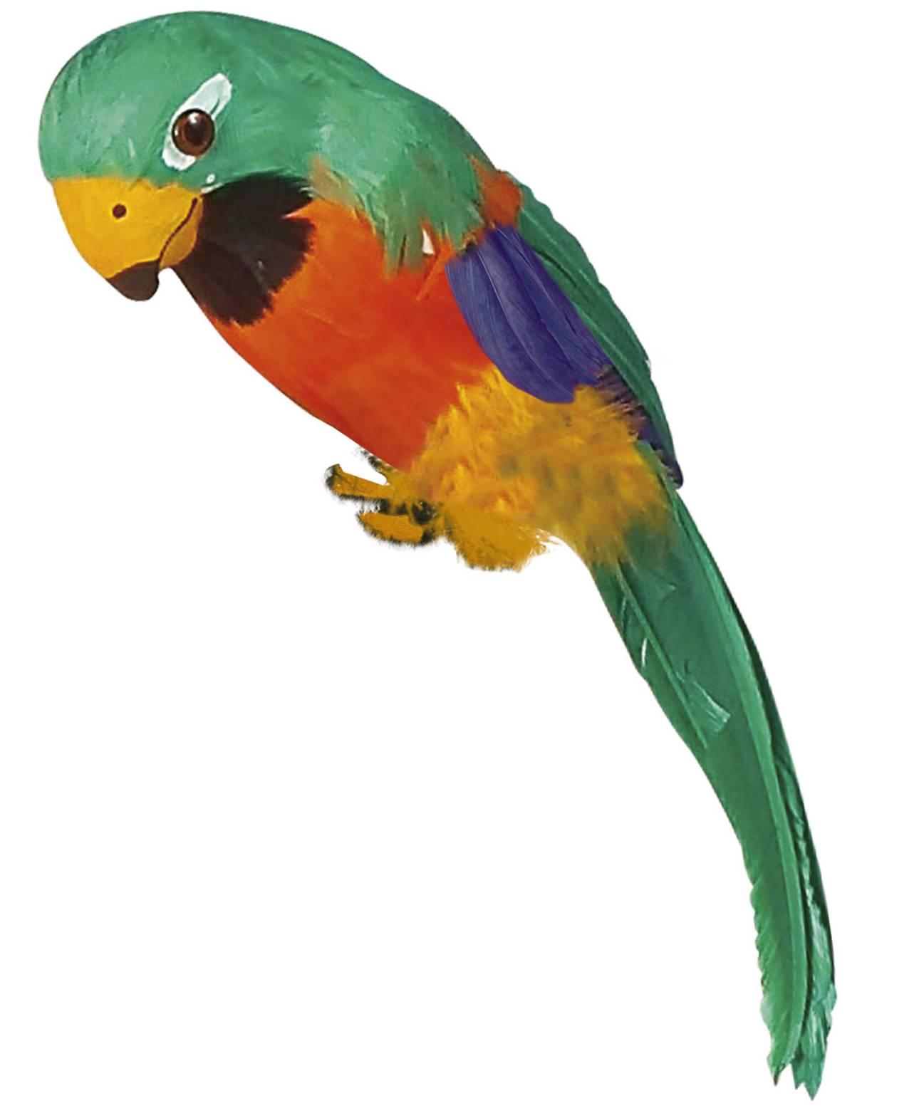 Perroquet-factice-35cm-2