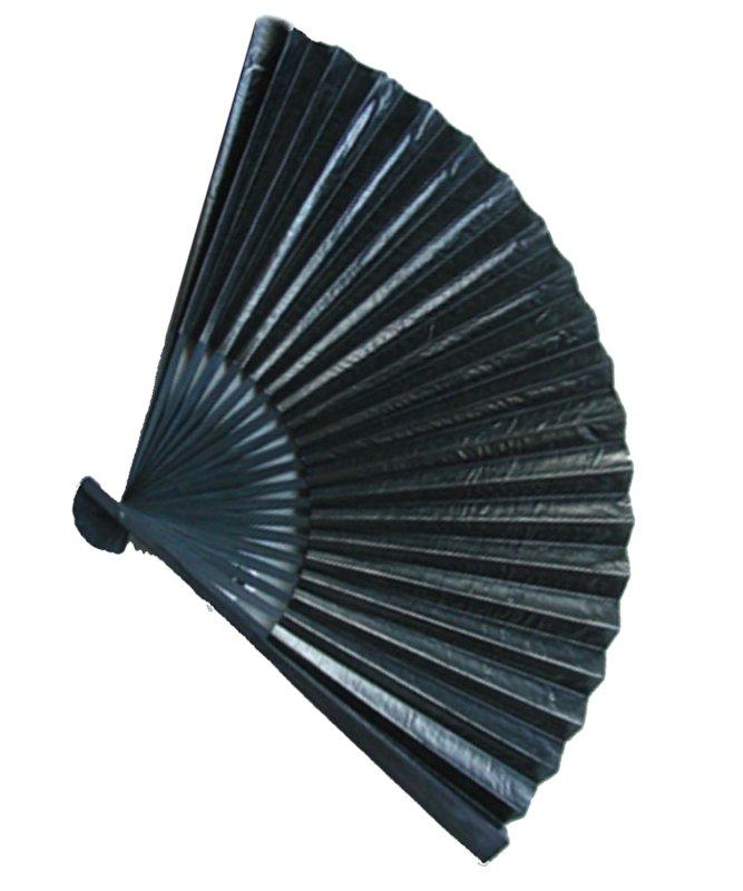 Eventail-verni-noir