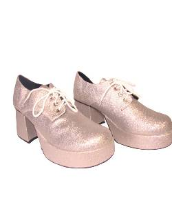 Chaussures-Disco-argent