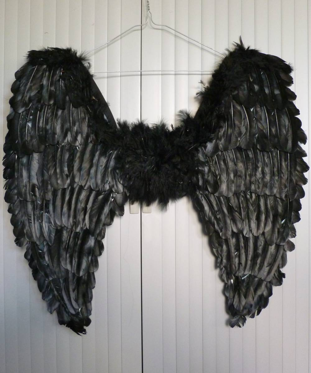 Ailes-plumes-60x60cm