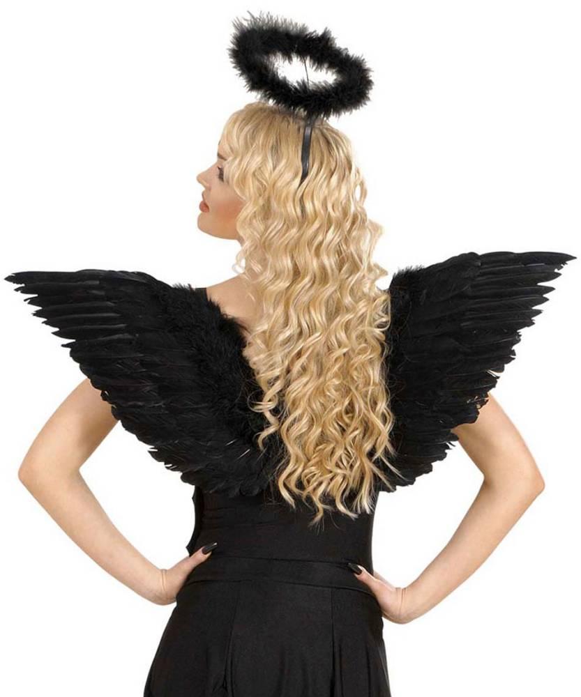 Ailes-en-plumes-noires-2