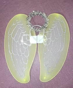 Ailes-ange-Set-M2