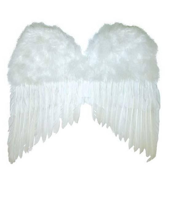 Ailes-plumes-50x42cm