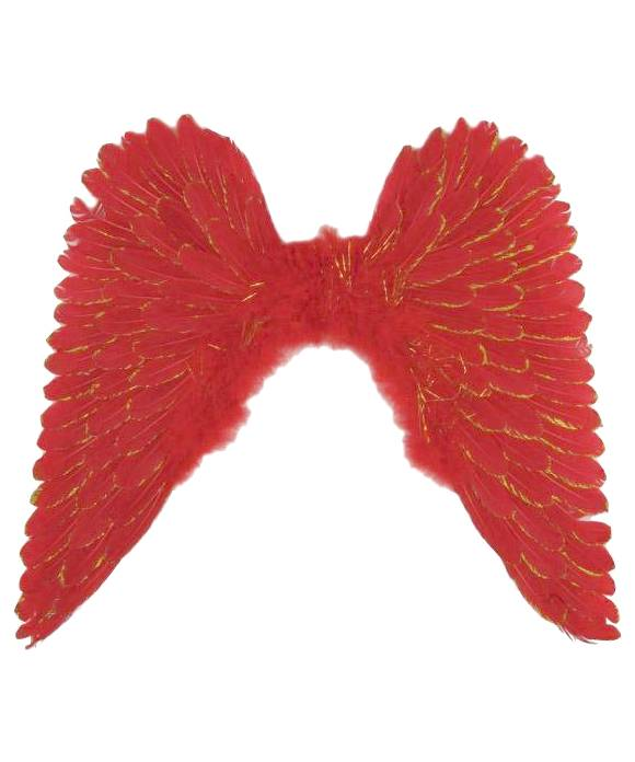 Ailes-plumes-rouge-60x60-cm