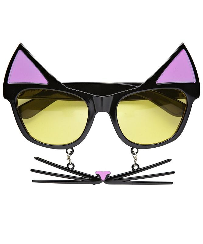 Lunettes-moustache-chat