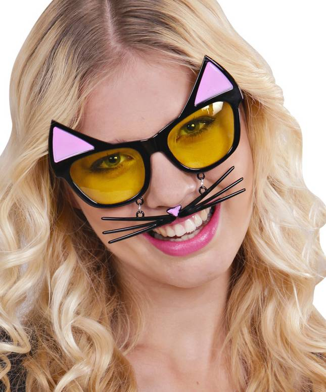Lunettes-Chat-3