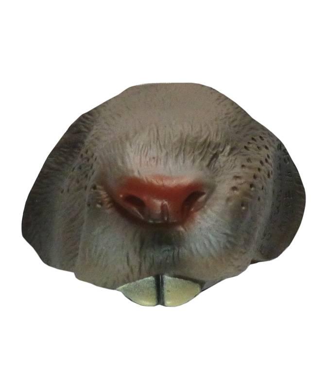 Nez-de-rat
