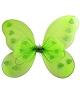 Ailes-papillon-M19