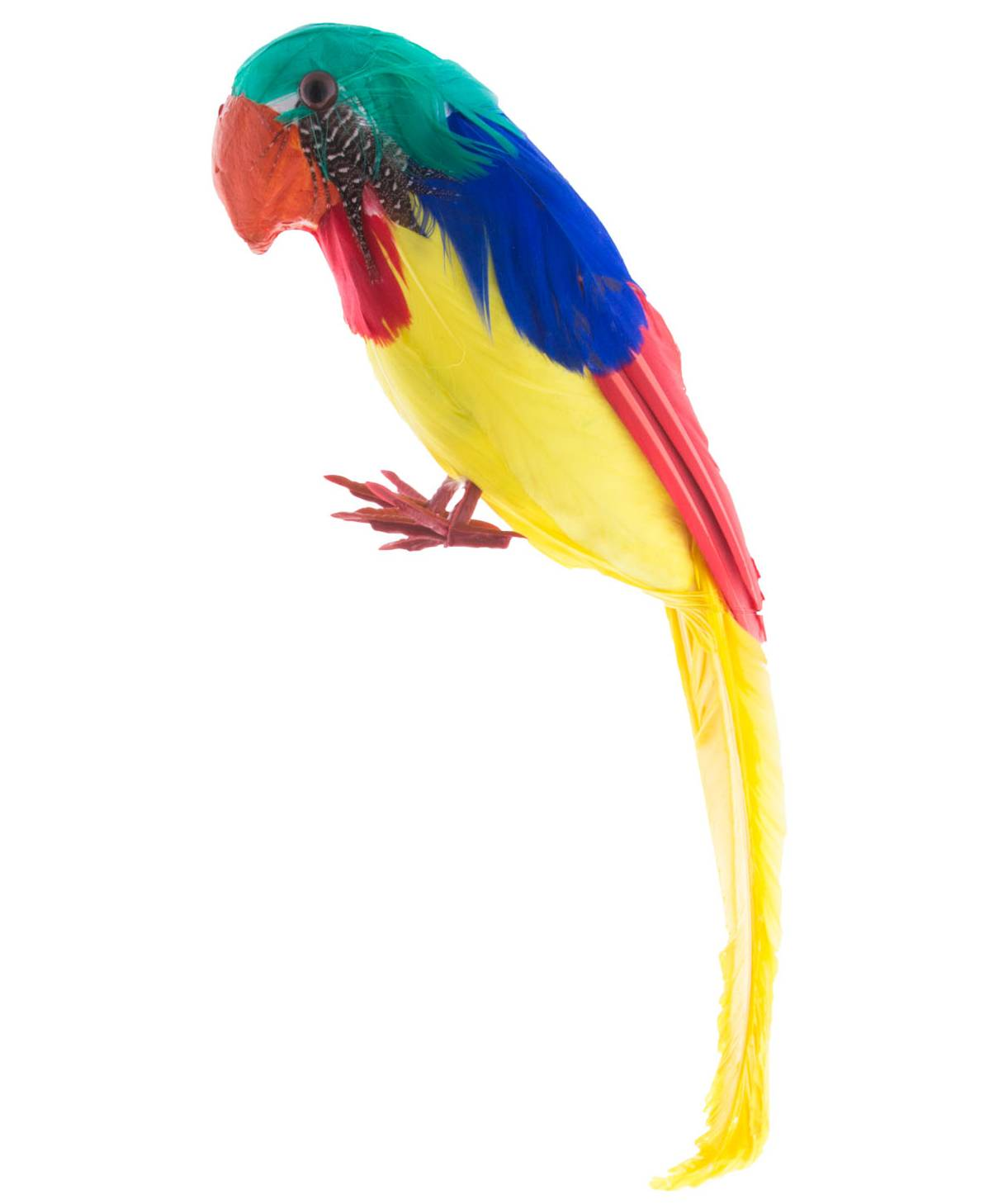 Faux-perroquet-30cm