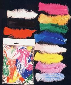 Lot-de-100-plumes-13cm