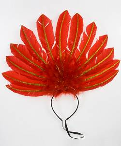 Coiffe-plumes-rouge-2