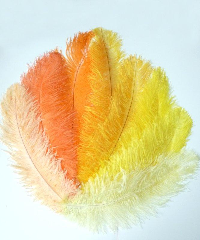 Plume-Autruche-Jaune-Orange-30-40cm